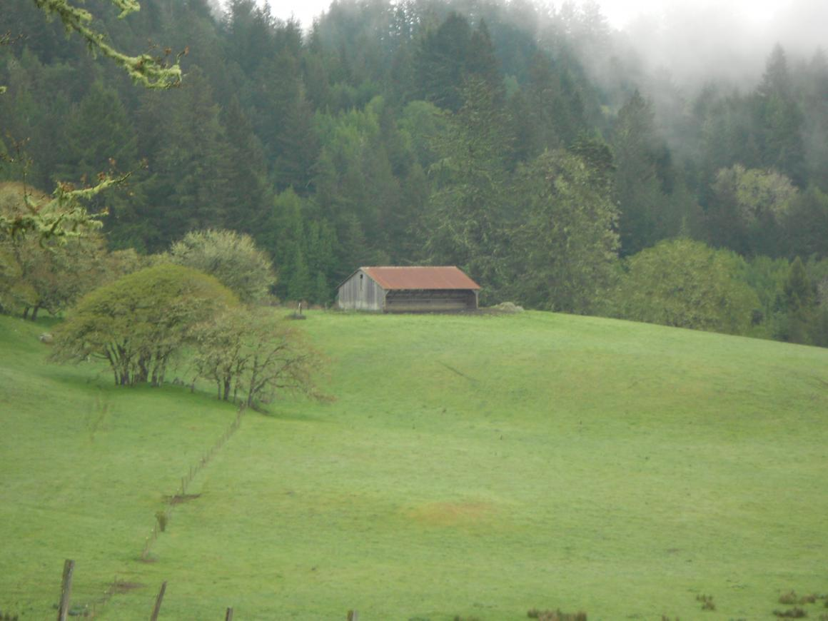 View with barn