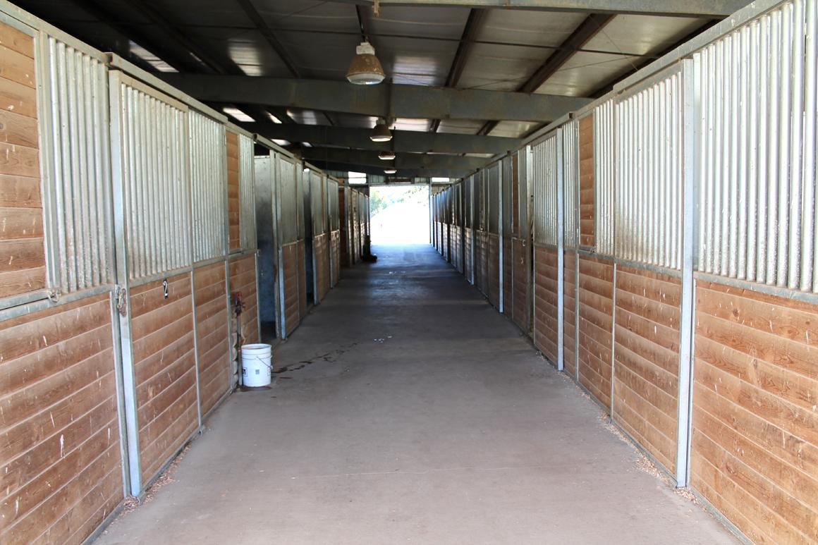 Stable interior showing stalls