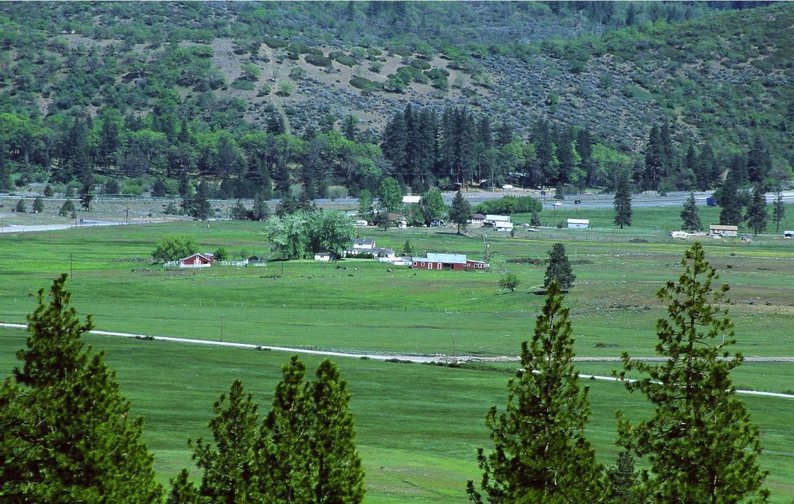 Lush Shasta Valley