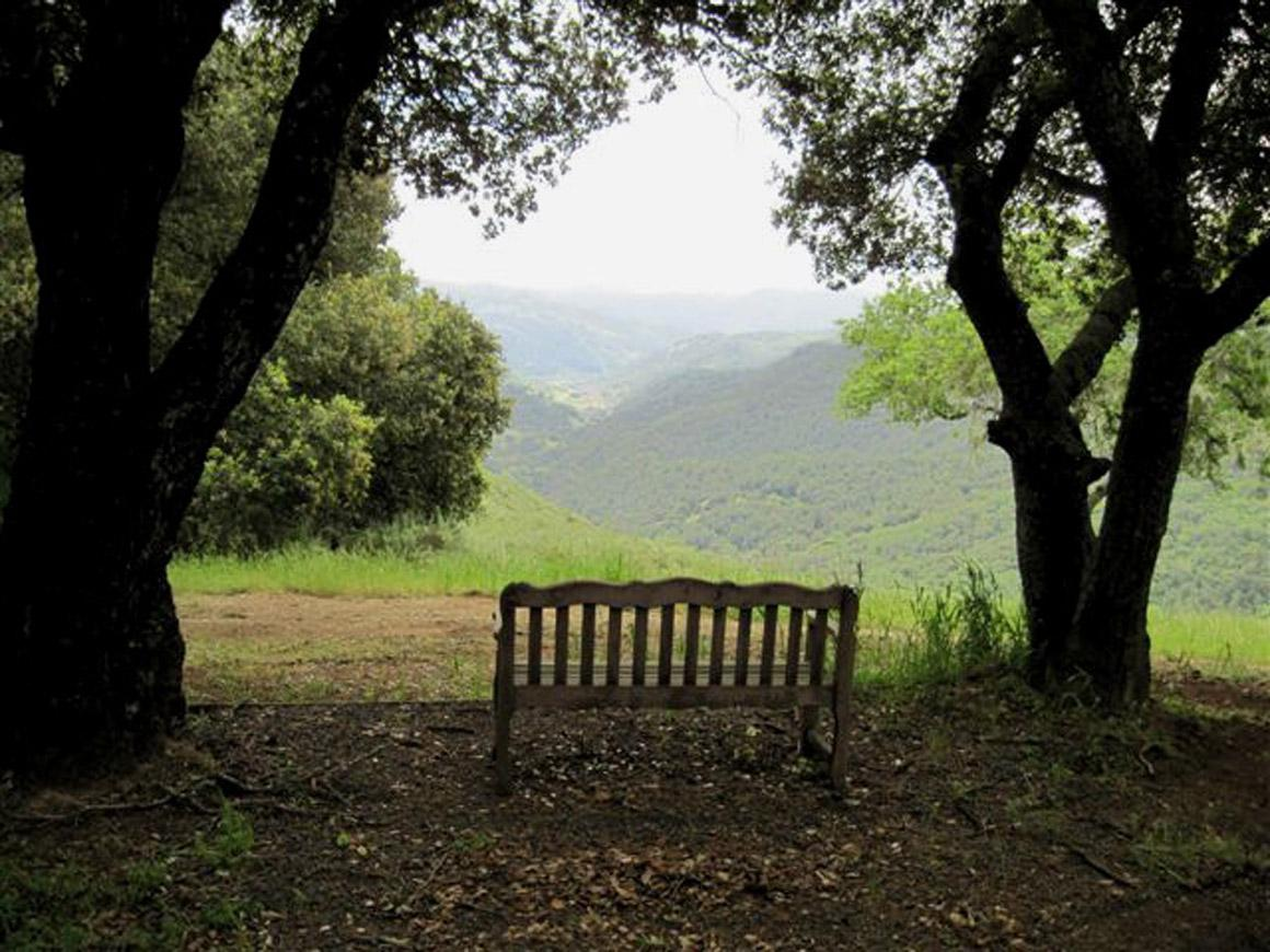 Bench with idyllic view