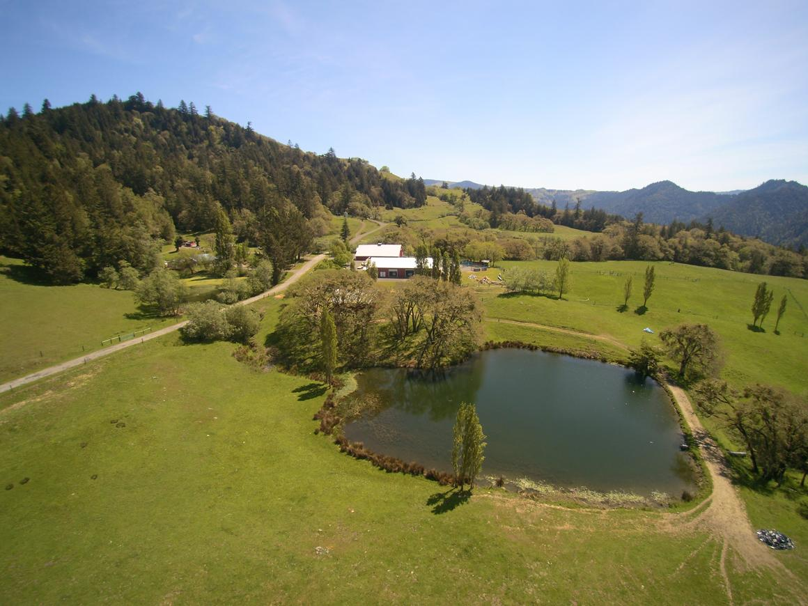 Aerial to house including pond