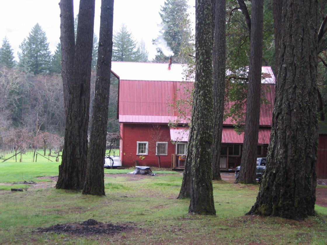 trees to red barn home