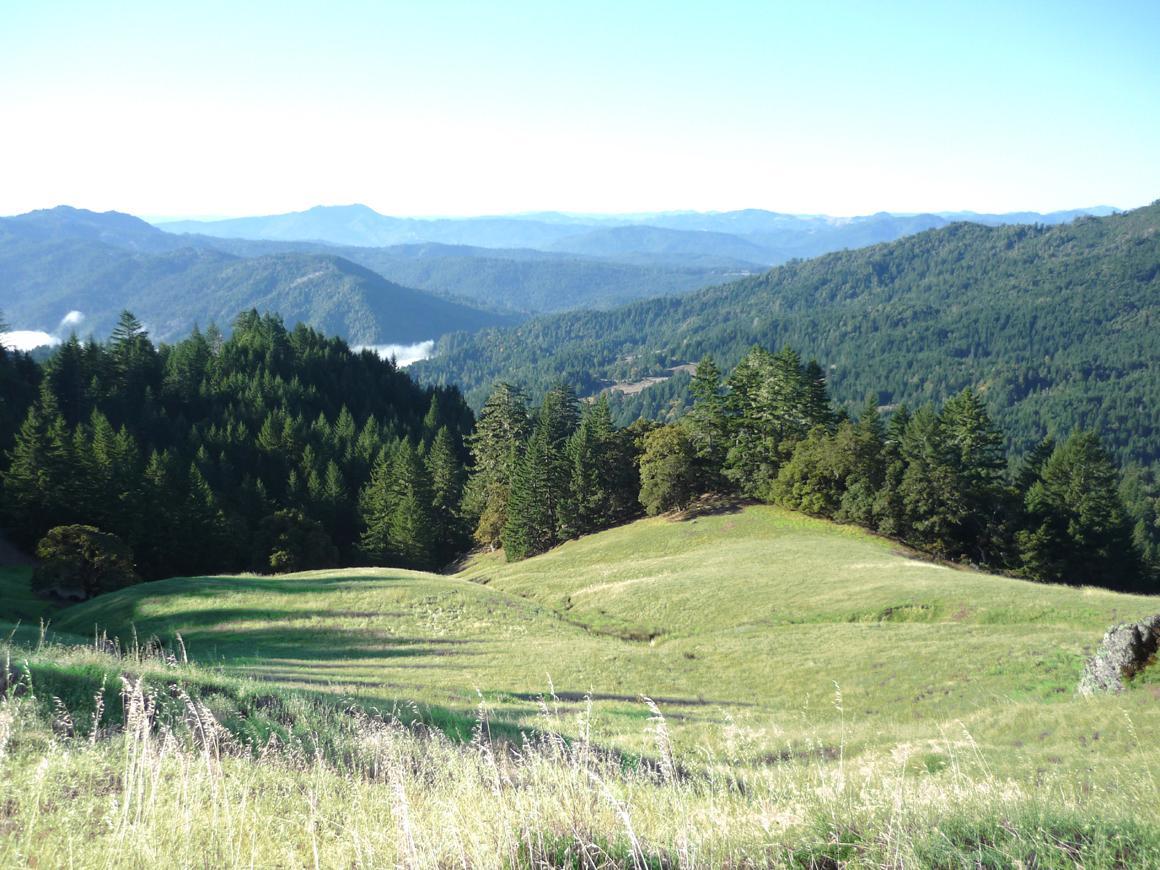 A ridgetop view