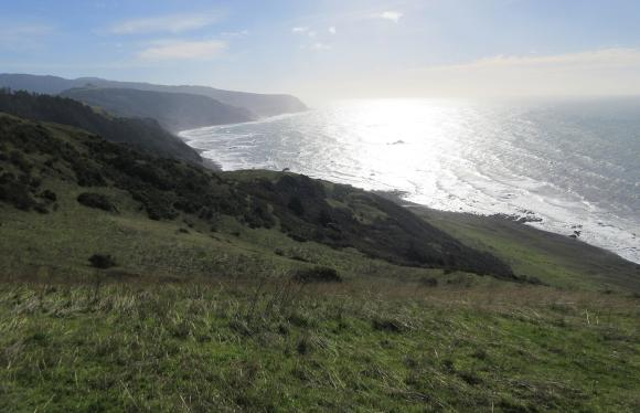 View down the coast